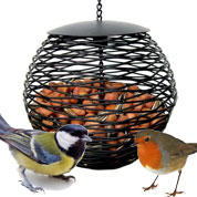 Bird Feeder for Peanuts - Caillard